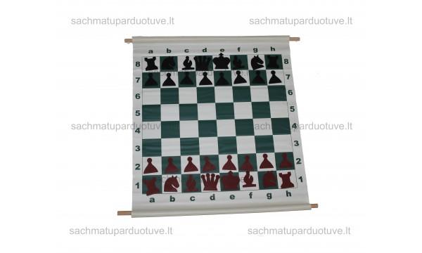 Demonstracinė šachmatų lenta