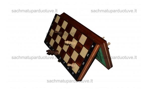 Magnetiniai šachmatai kelionėms